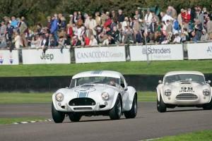 Racing Cobras